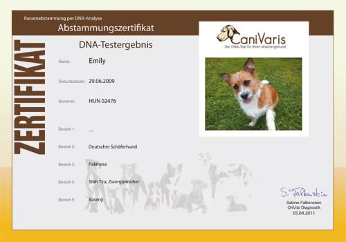 Neues Bildzertifikat Bei CaniVaris!