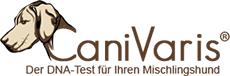 CaniVaris – Der Hunde DNA-Test für Ihren Mischlingshund
