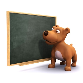 3d Small Dog At The Blackboard