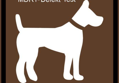 MDR1-Defekt Test