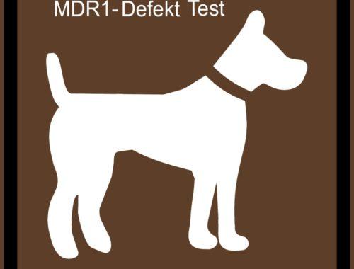 MDR1 Defekt Test